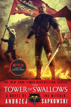 The Tower Of Swallows (The Witcher #4)
