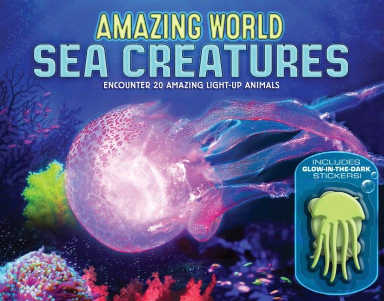 Amazing World Sea Creatures